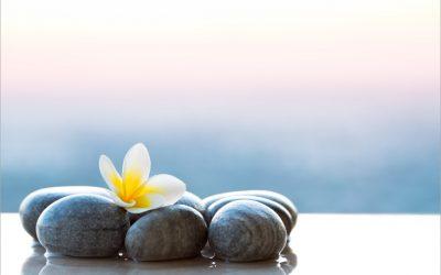 Luxe wellness arrangement met overnachting | 4x de beste